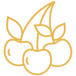 pálinka cseresznye ikon